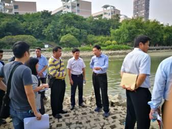 张文军副市长率队检查竹排江流域水体排查治理工作情况